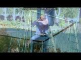 «осень 2012» под музыку Евгения Отрадная - Уходи и дверь закрой. Picrolla