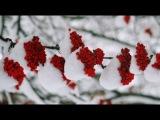 Холода. Природа Крайнего Севера (Фото слайд-шоу, Winchester156 )